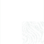 E-0200 White Grain