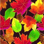 E-6229 Autumn Leaves