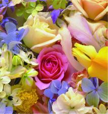 M-7123 Floral Medley