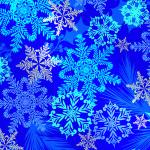 X-9053 SnowflakeSwirl