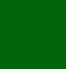 X-5469 XmasForestGreen